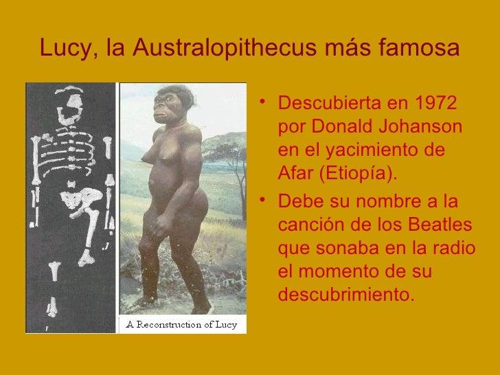 Lucy, la Australopithecus más famosa <ul><li>Descubierta en 1972 por Donald Johanson en el yacimiento de Afar (Etiopía). <...