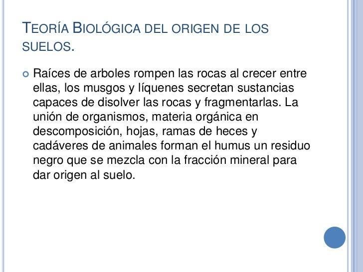 El origen de los suelos for Significado de suelo