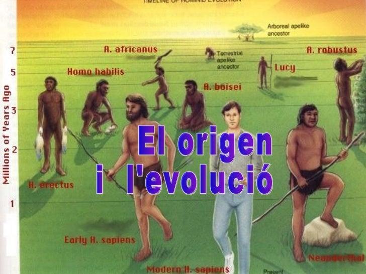 El origen i l'evolució    humana  Fet per: MARIA MORET HERVÁS DE 4B El origen  i  l'evolució