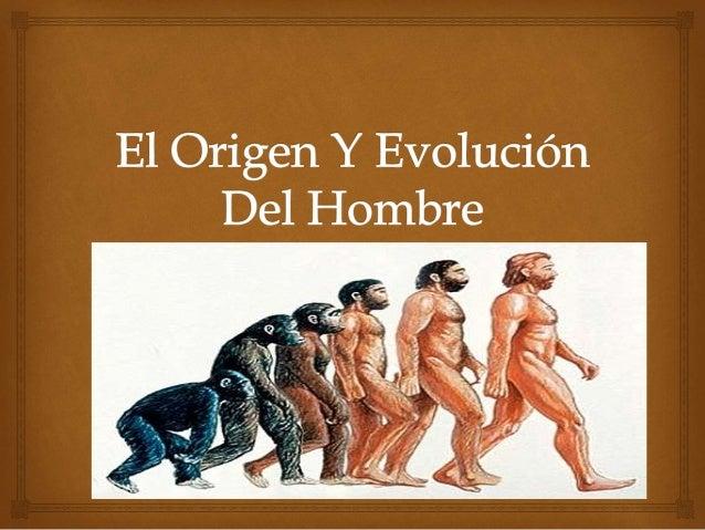CLASIFICACIÓN DENTRO DEL REINO ANIMAL  EL LUGAR DEL HOMBRE EN EL REINO ANIMAL  reino - - - - - - - - - - - - - - - - - - -...