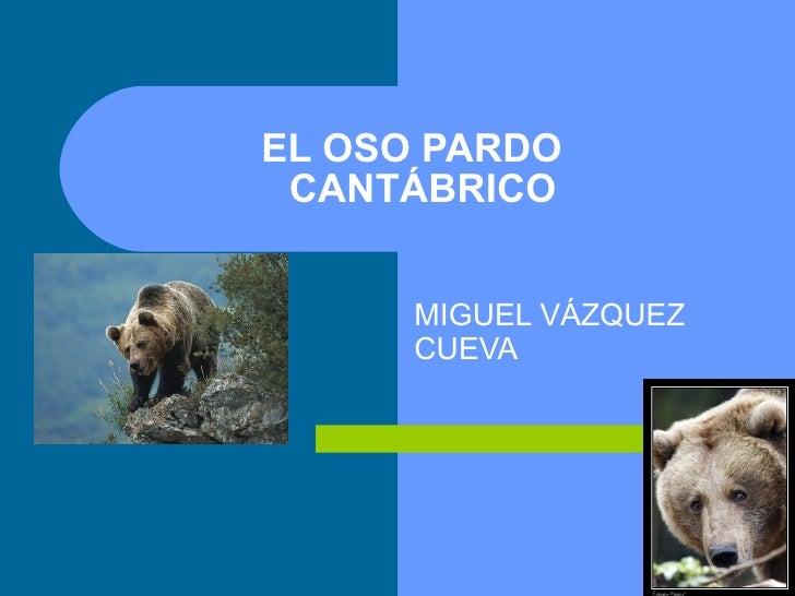 EL OSO PARDO   CANTÁBRICO MIGUEL VÁZQUEZ CUEVA