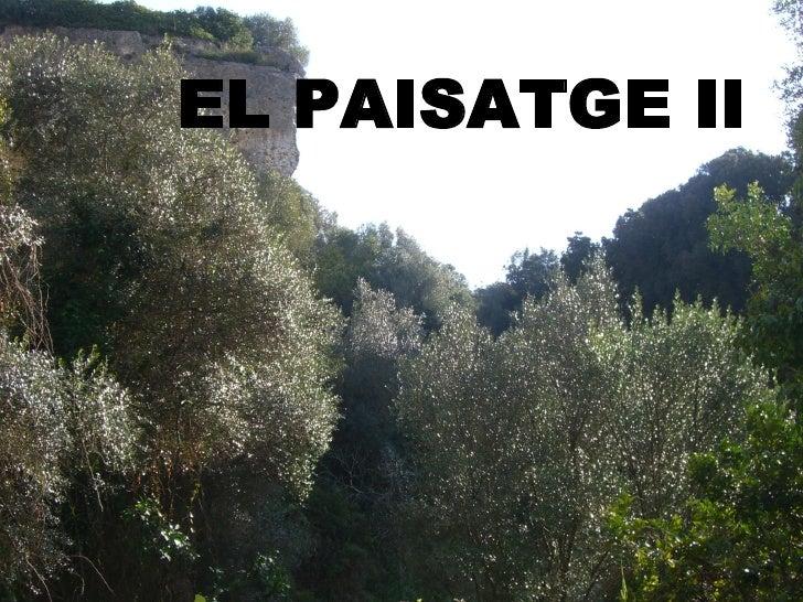 EL PAISATGE II