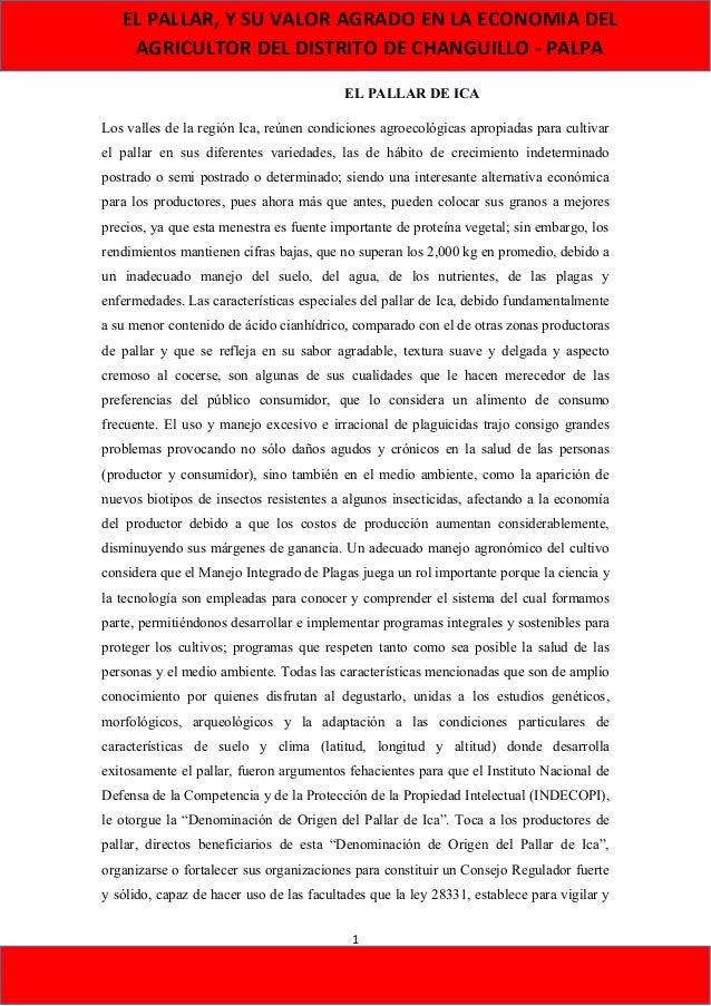 EL PALLAR, Y SU VALOR AGRADO EN LA ECONOMIA DEL AGRICULTOR DEL DISTRITO DE CHANGUILLO - PALPA EL PALLAR DE ICA Los valles ...