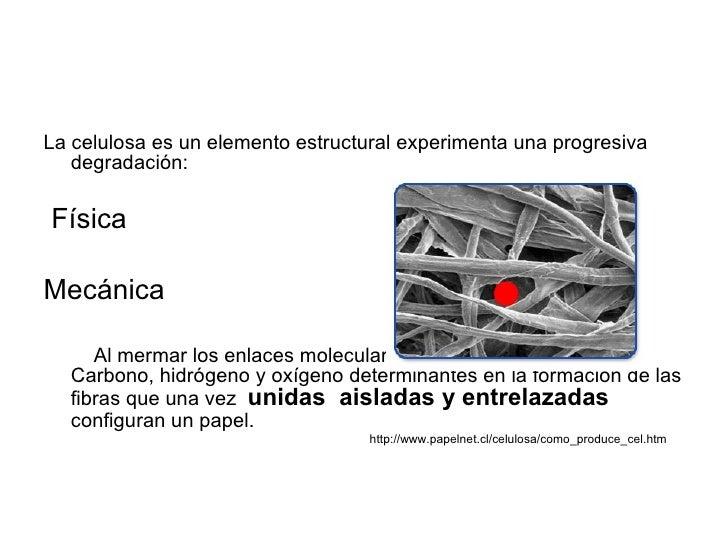 El Papel CóMo Estructura) Slide 3