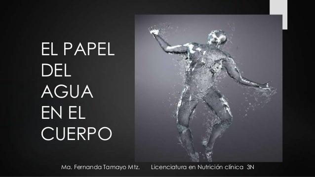 EL PAPEL DEL AGUA EN EL CUERPO Ma. Fernanda Tamayo Mtz.  Licenciatura en Nutrición clínica 3N