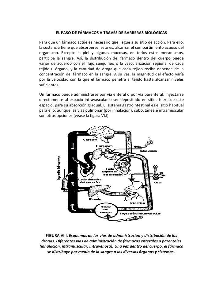 EL PASO DE FÁRMACOS A TRAVÉS DE BARRERAS BIOLÓGICASPara que un fármaco actúe es necesario que llegue a su sitio de acción....
