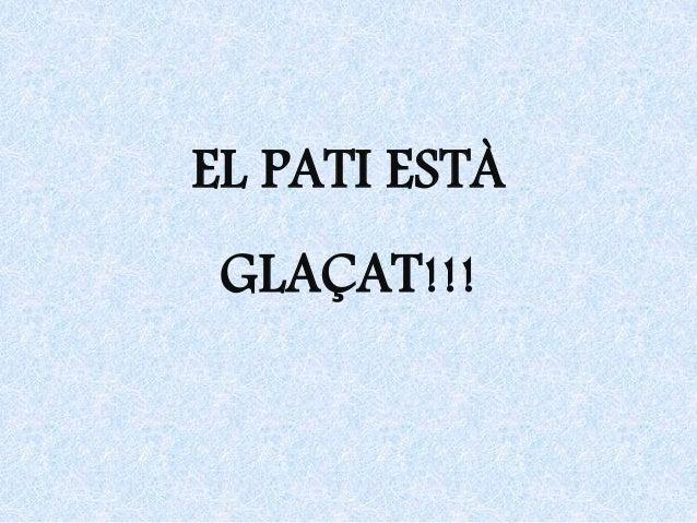 EL PATI ESTÀ GLAÇAT!!!