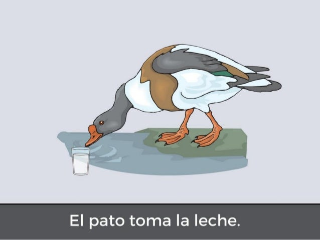 El pato que tiene hambre