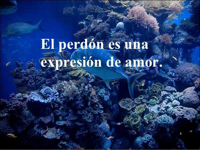 El perdón es unaexpresión de amor.