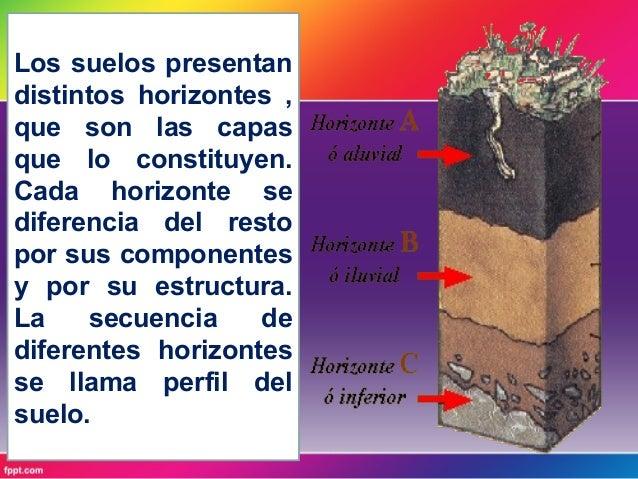 El perfil del suelo for Como estan formados los suelos