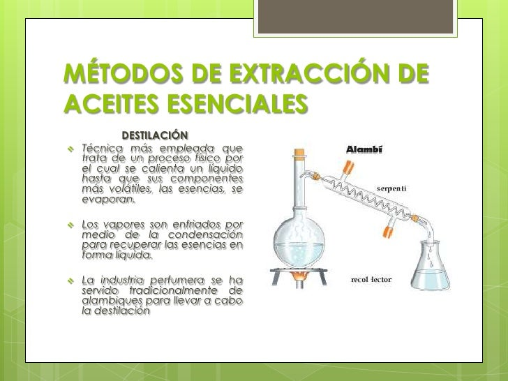 perfumes y sus componentes