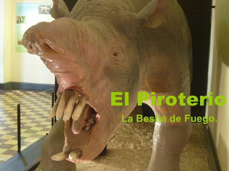 El Piroterio La Bestia de Fuego.