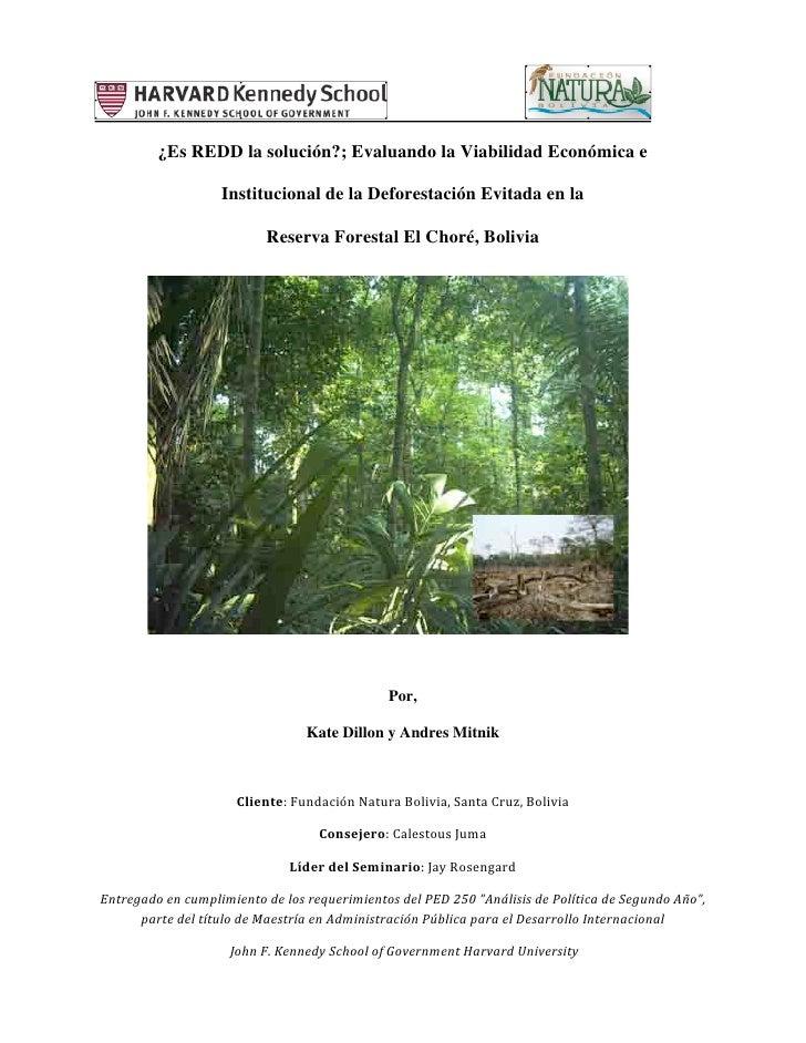 ¿Es REDD la solución?; Evaluando la Viabilidad Económica e                         Institucional de la Deforestación Evita...