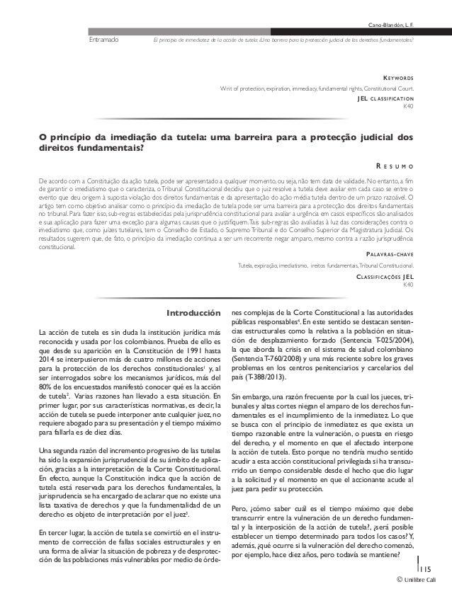 El principio de inmediatez de la acción de tutela Slide 2