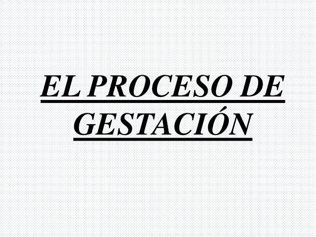 EL PROCESO DE  GESTACIÓN