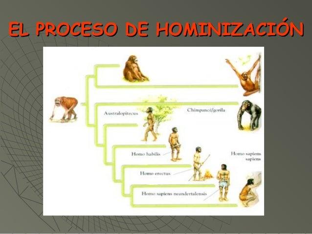 EL PROCESO DE HOMINIZACIÓNEL PROCESO DE HOMINIZACIÓN