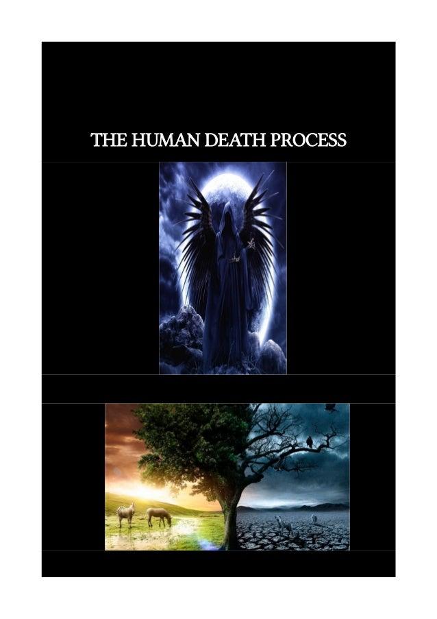 THE HUMAN DEATH PROCESS