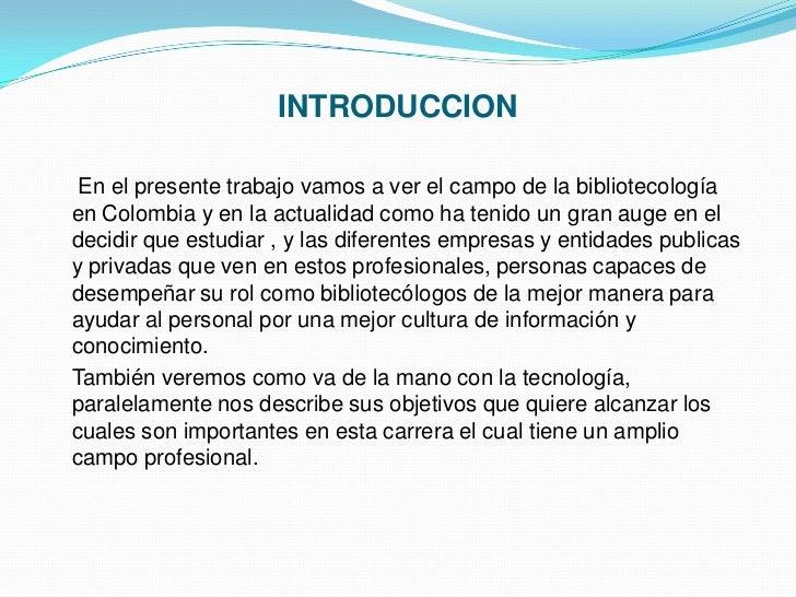 El profesional en ciencia de la información Slide 3
