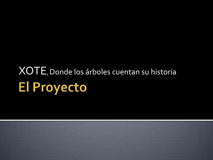 El Proyecto<br />XOTE, Donde los árboles cuentan su historia<br />