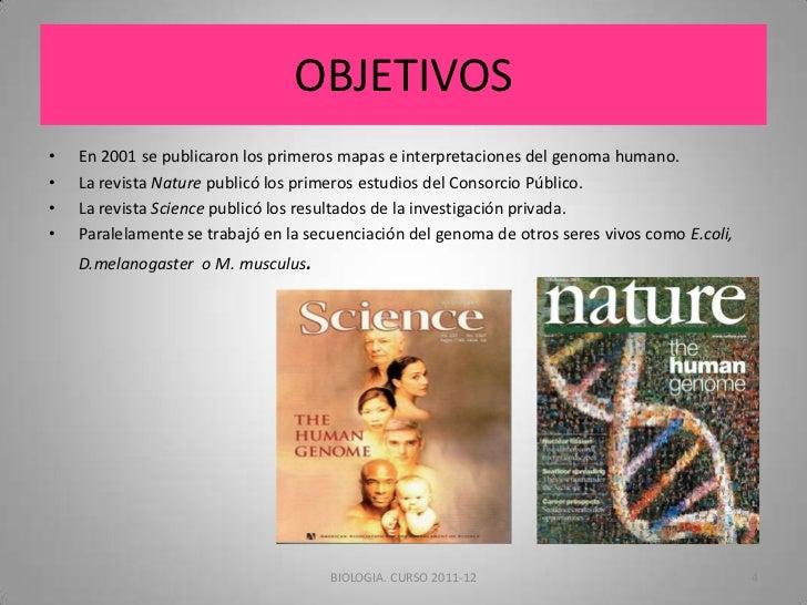 El proyecto genoma humano for En 2003 se completo la secuenciacion del humano