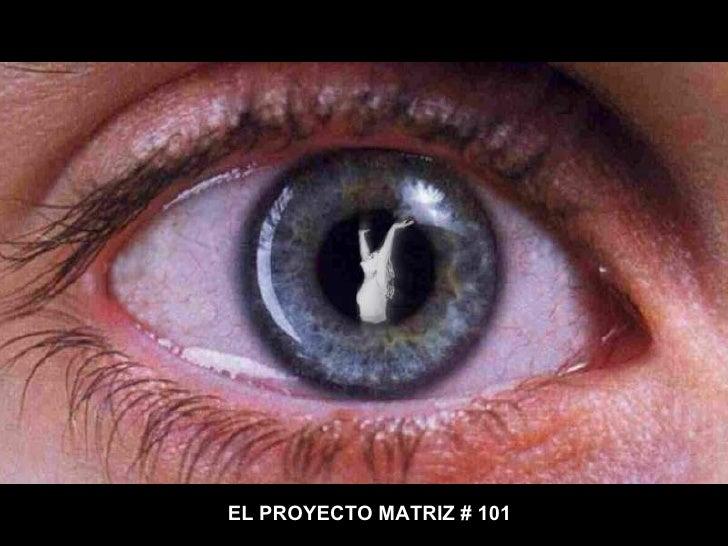 EL PROYECTO MATRIZ # 101