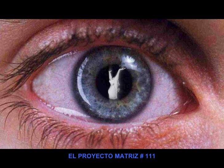 EL PROYECTO MATRIZ # 111
