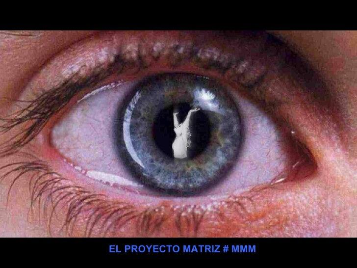 EL PROYECTO MATRIZ # 118