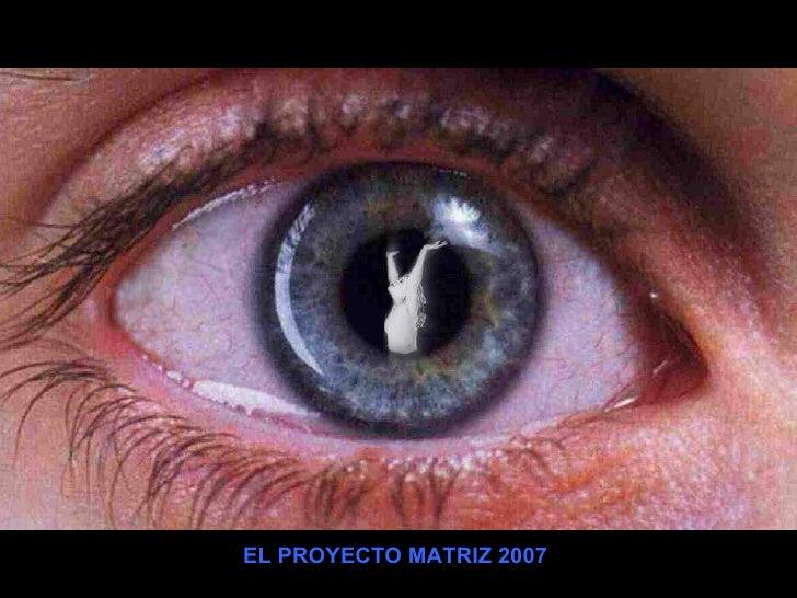 EL PROYECTO MATRIZ 2007