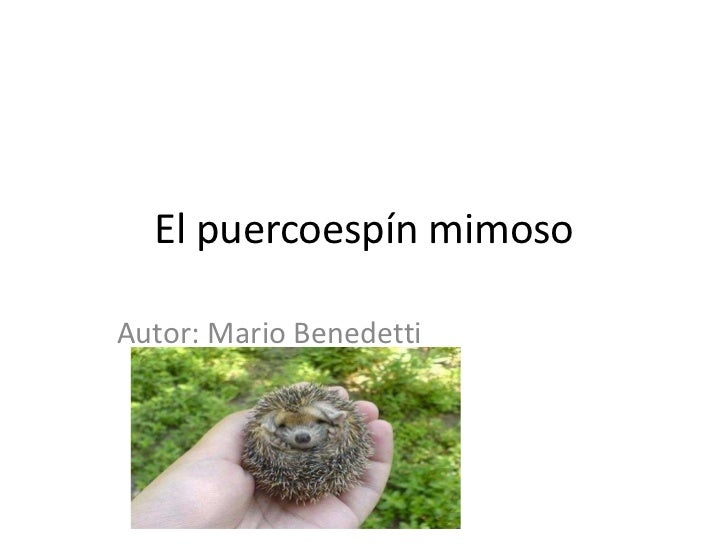 El puercoespín mimoso<br />Autor: Mario Benedetti<br />