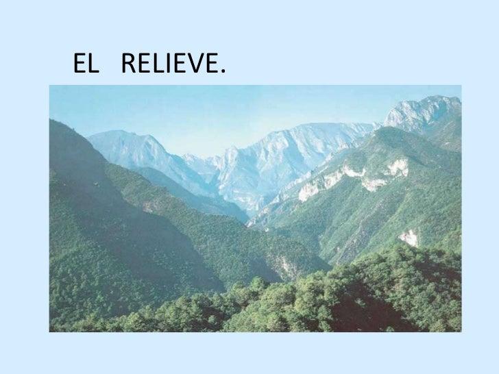 EL   RELIEVE.<br />