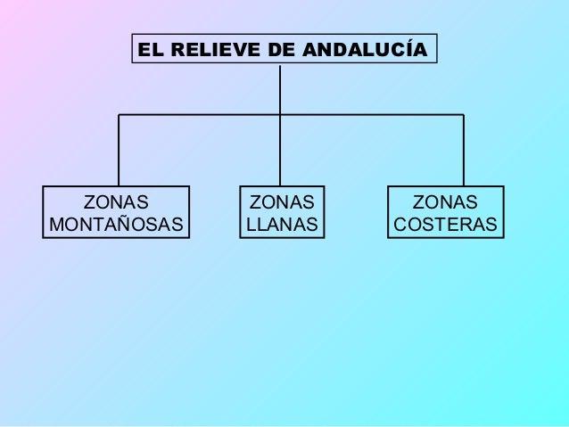 LAS ZONAS MONTAÑOSAS  SIERRA MORENA                        EL SISTEMA BÉTICO(Ocupa el norte andaluz)            (Por el su...