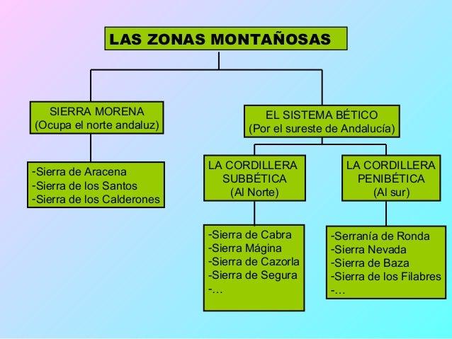 LAS ZONAS LLANASEL VALLE DEL GUADALQUIVIR                     CAMPIÑAS Y VEGASSe extiende por el centro de la          Otr...