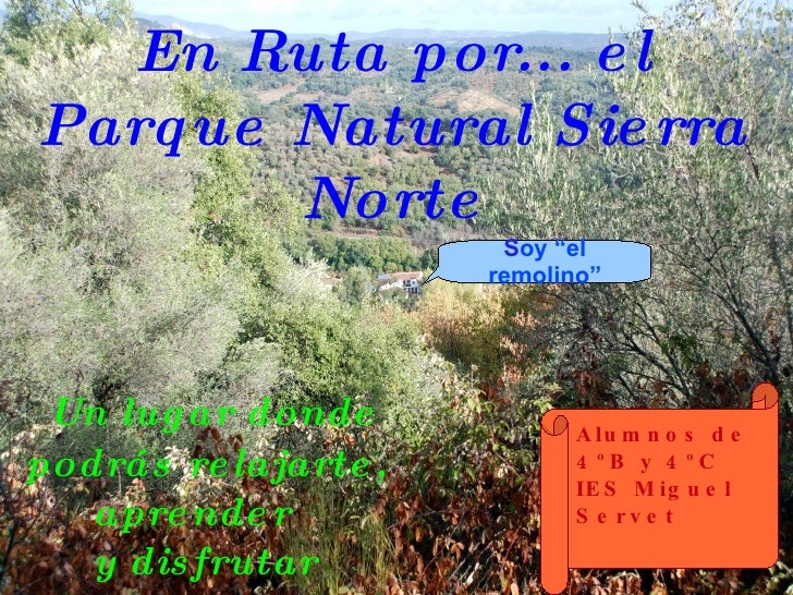 En Ruta por... el Parque Natural Sierra Norte Un lugar donde  podrás relajarte, aprender  y disfrutar Alumnos de 4ºB y 4ºC...