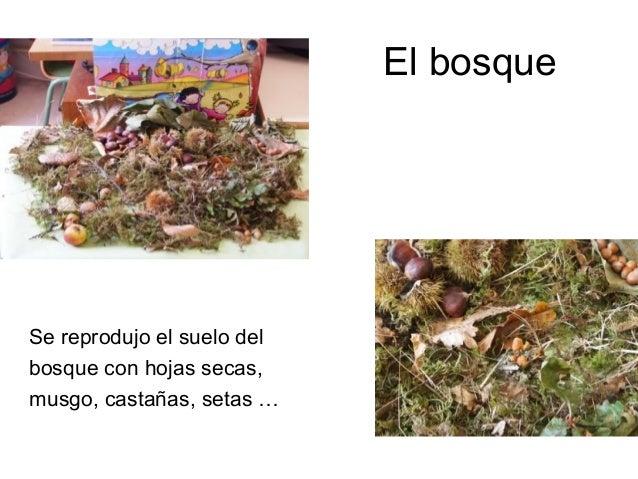 El bosqueSe reprodujo el suelo delbosque con hojas secas,musgo, castañas, setas …
