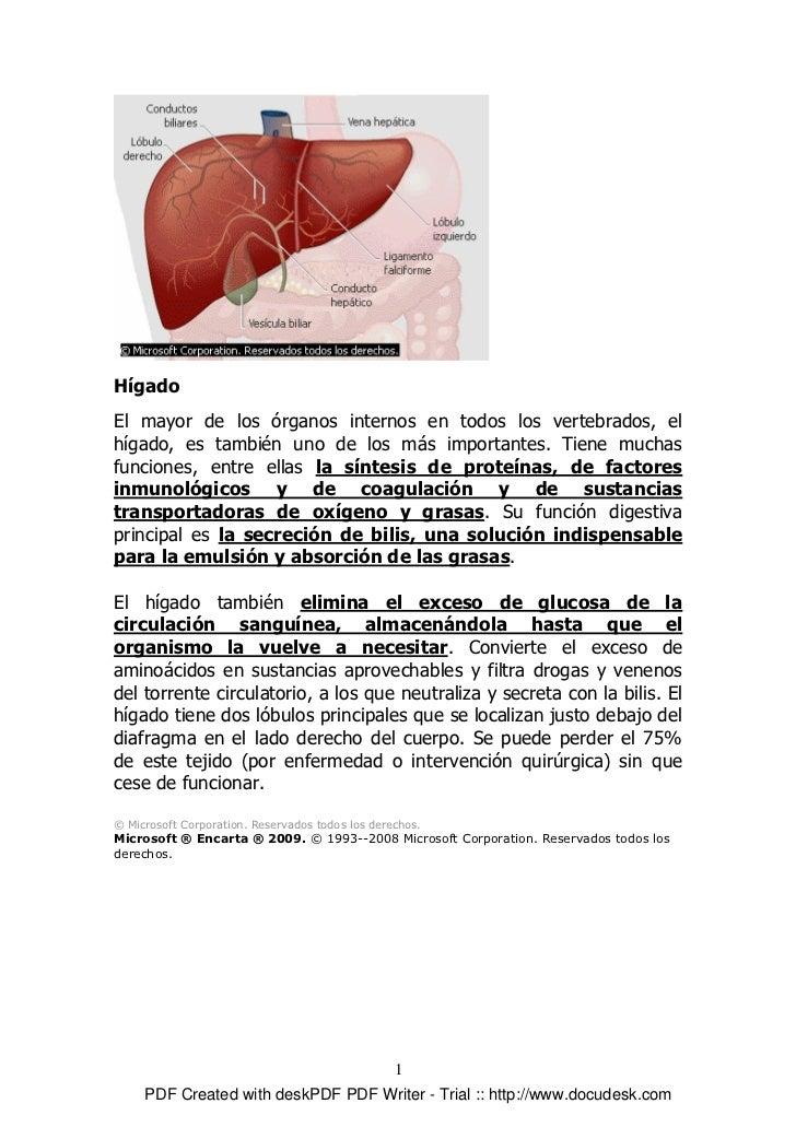 Hígado El mayor de los órganos internos en todos los vertebrados, el hígado, es también uno de los más importantes. Tiene ...