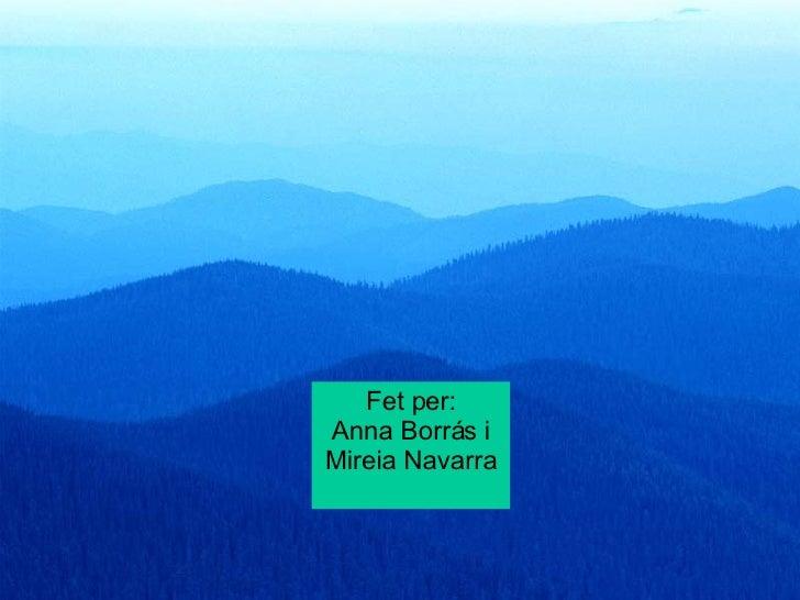 Fet per: Anna Borrás i Mireia Navarra