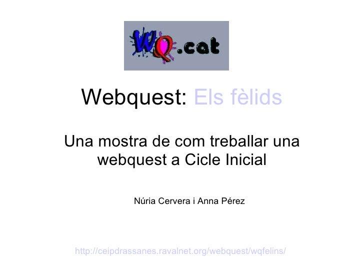 Webquest:  Els   fèlids Una mostra de com treballar una webquest a Cicle Inicial Núria Cervera i Anna Pérez http://ceipdra...