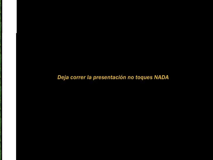 Deja correr la presentación no toques NADA