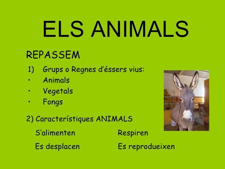 ELS ANIMALS <ul><li>Grups o Regnes d'éssers vius: </li></ul><ul><li>Animals </li></ul><ul><li>Vegetals </li></ul><ul><li>F...