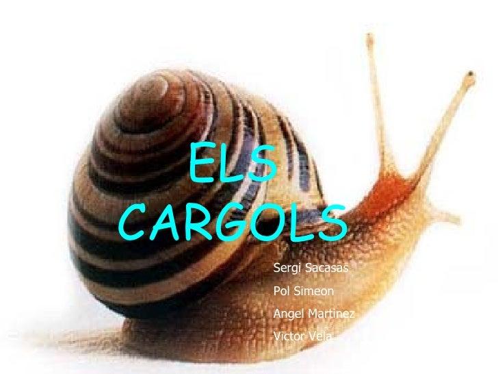 ELSELS CARGOLS  CARGOLS          Sergi Sacasas          Pol Simeon          Angel Martinez          Victor Vela