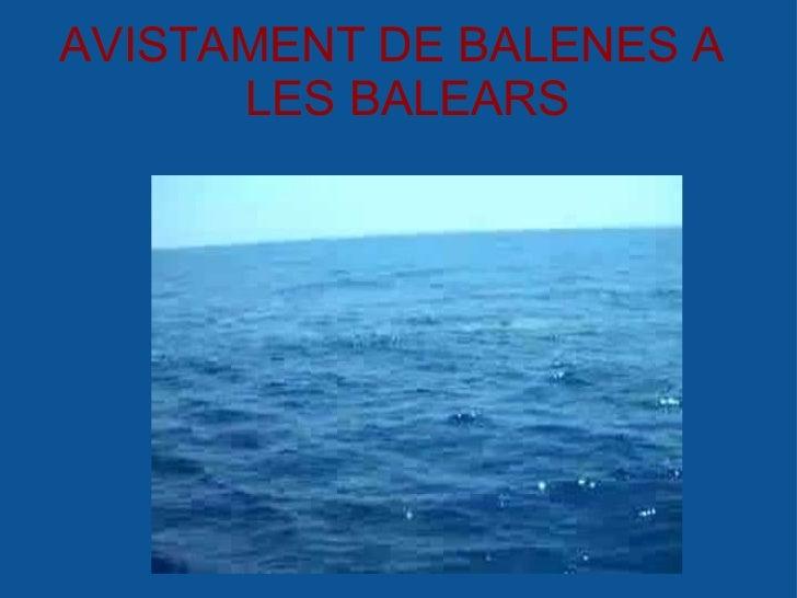 AVISTAMENT DE BALENES A        LES BALEARS