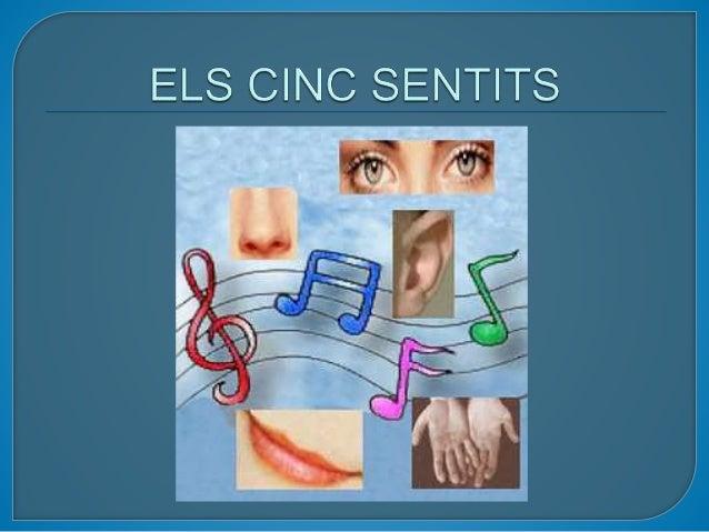 Els cinc sentits