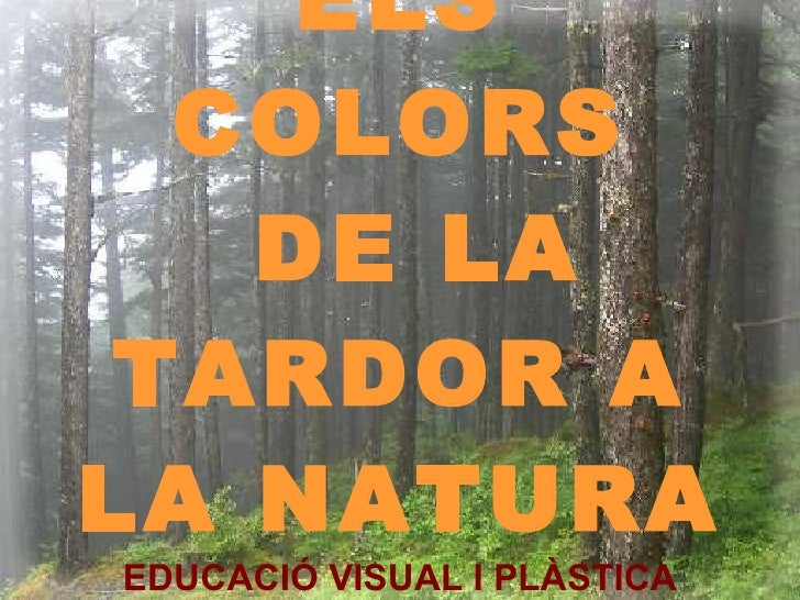 ELS COLORS  DE LA TARDOR A LA NATURA EDUCACIÓ VISUAL I PLÀSTICA CURS 2009-2010 CICLE INICIAL