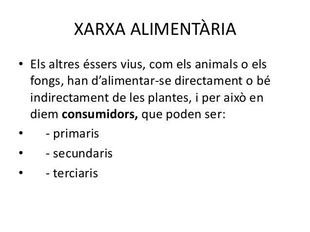CONSUMIDORS PRIMARIS• Els animals que s'alimenten directament de les  plantes són consumidors primaris. Per  tant, tots el...
