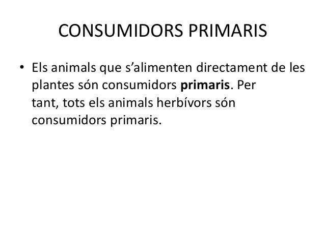 CONSUMIDORS TERCIARIS• Els animals que s'alimenten dels secundaris  són consumidors terciaris.