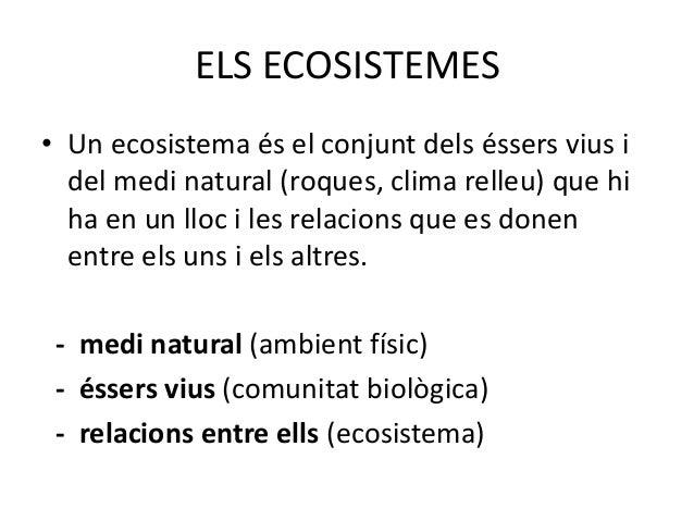 ELS ECOSISTEMES• Un ecosistema és el conjunt dels éssers vius i  del medi natural (roques, clima relleu) que hi  ha en un ...