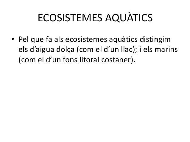 ECOSISTEMES AQUÀTICS