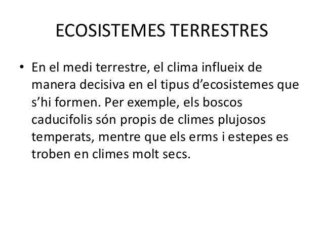 BOSCOS CADUCIFOLIS