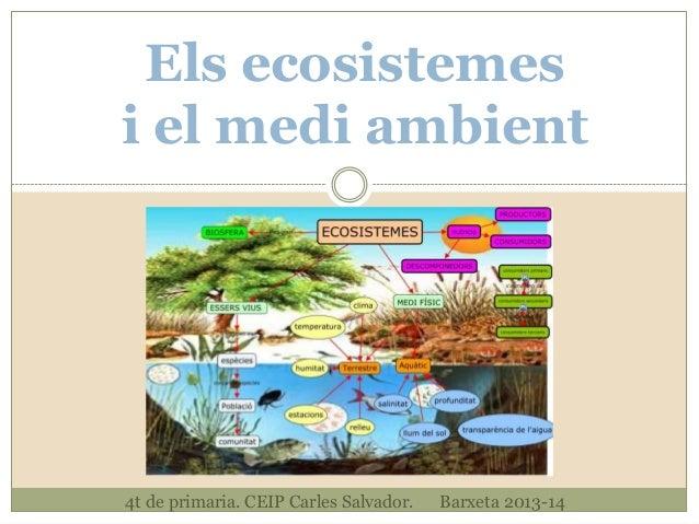 Els ecosistemes i el medi ambient  4t de primaria. CEIP Carles Salvador.  Barxeta 2013-14