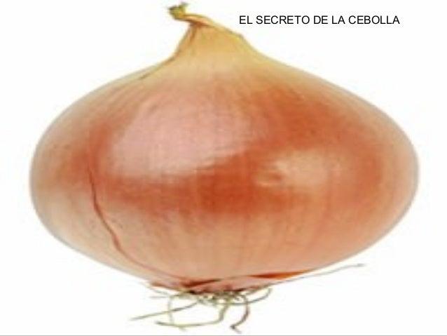 EL SECRETO DE LA CEBOLLA